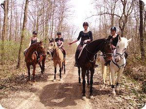 Promenade en forêt à cheval